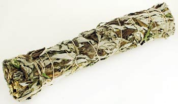Black Sage smudge stick 8""