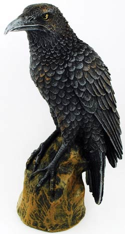 Forward Looking Raven 6 1/2""